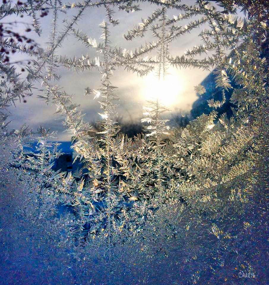 frost window ch .jpg