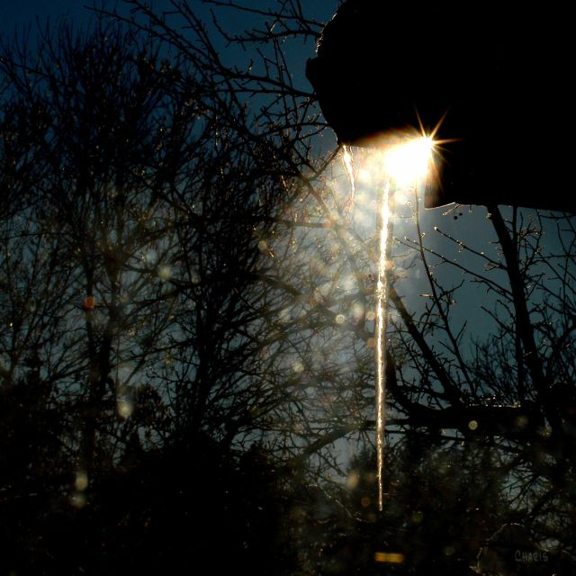 icicle-sun-ray-dsc_0358