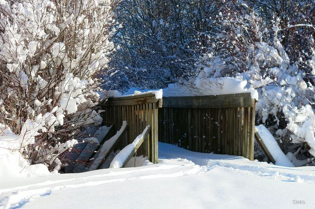 bridge-kin-park-winter-snow-ch-img_6044
