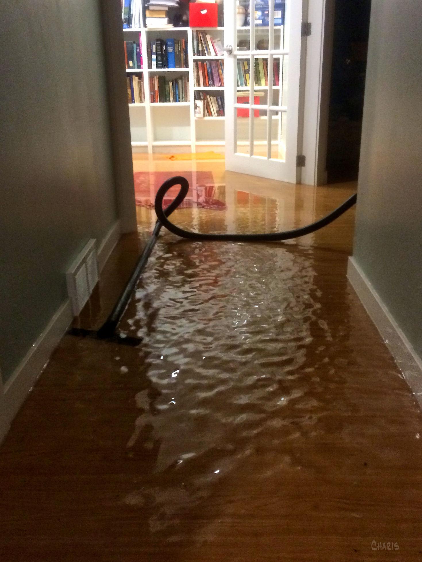 hallway water IMG_1378