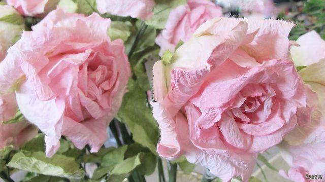 paper roses def
