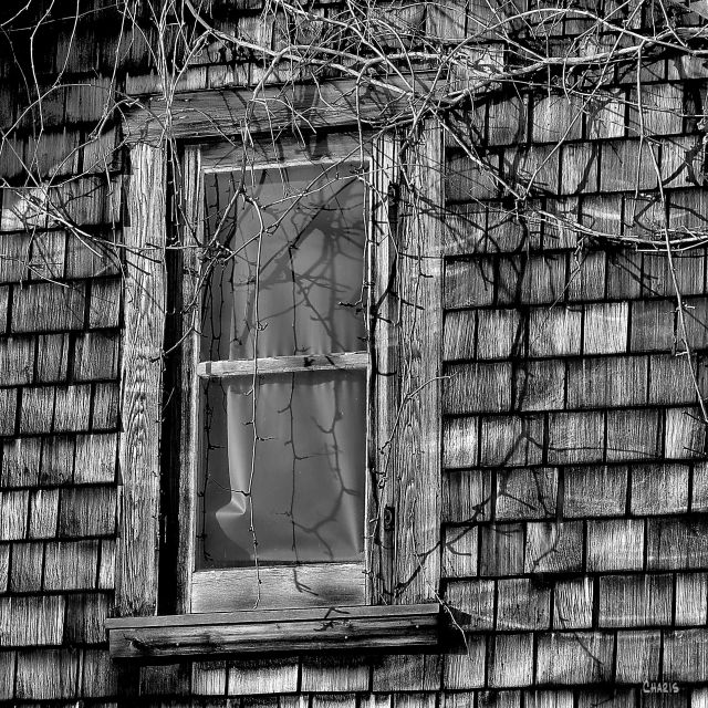 window shingles be ch sq IMG_0361