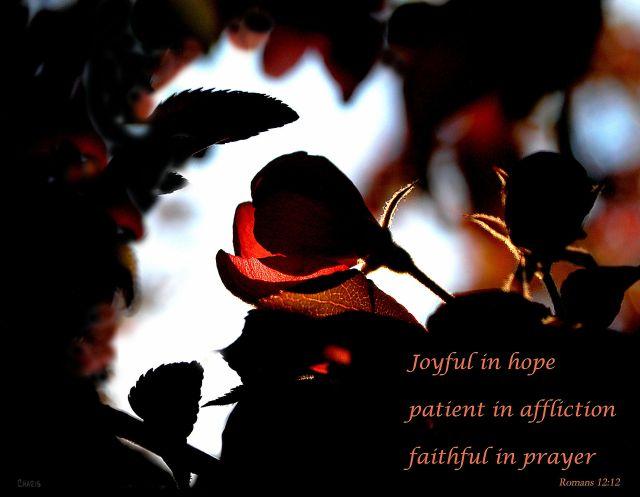 joyful in hope ch DSC_0044