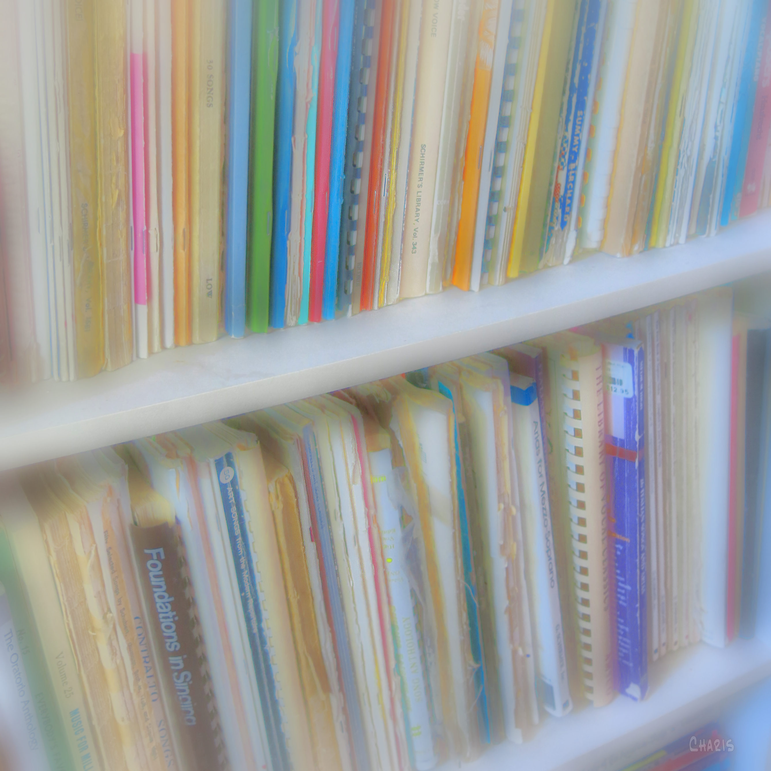 music books ch IMG_8288