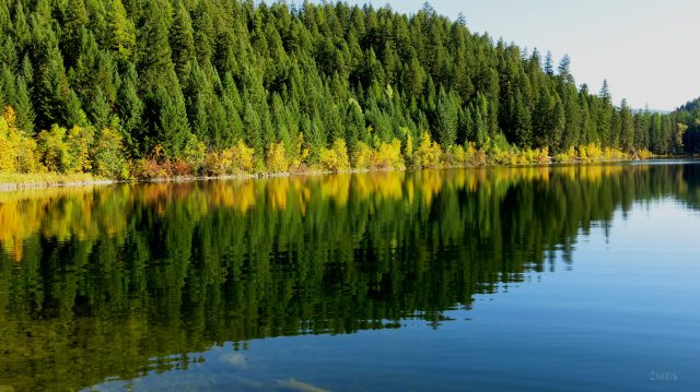 Mineral Lake autumn rs ch IMG_0508