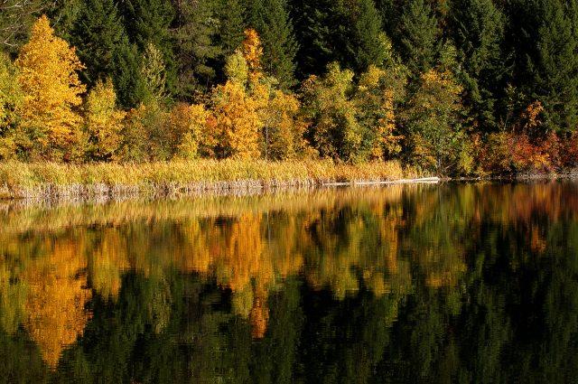 mineral lake september autumn DSC_0154 (2)