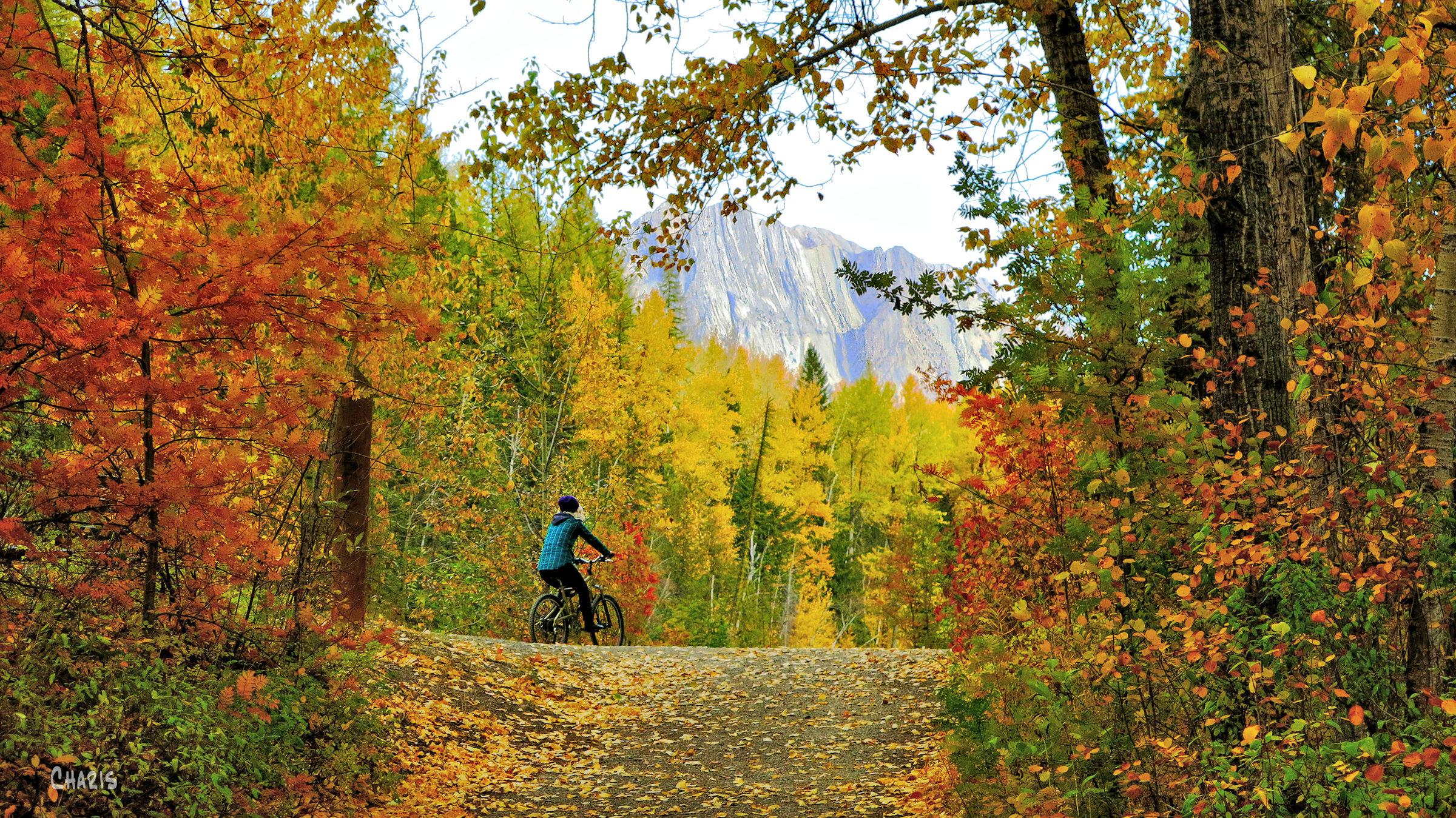 autumn Fernie bike rider ch rs mountiain IMG_1284