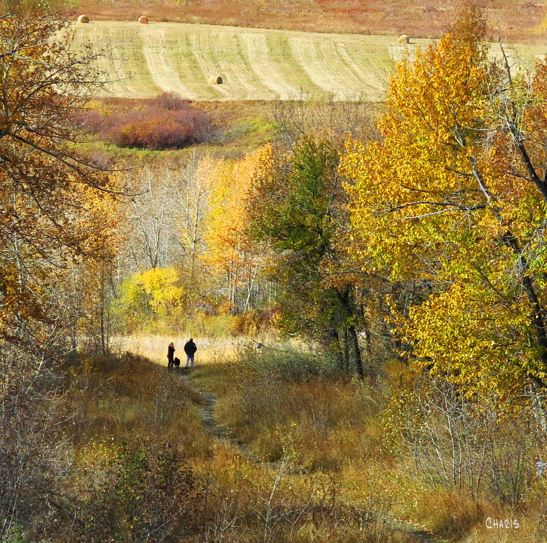 Black Diamond Couple trail path ch IMG_1048