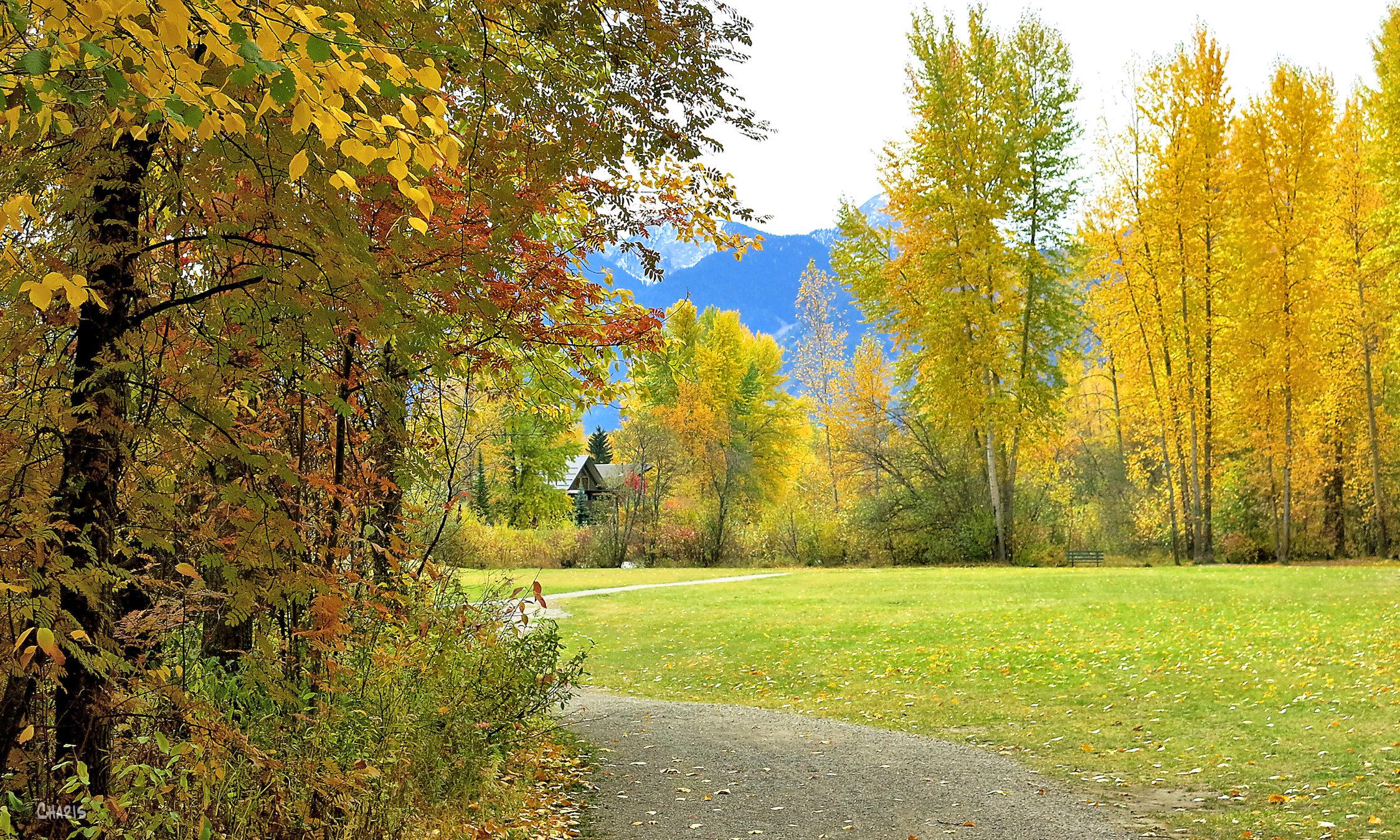 fautumn Fernie park house ch rs mountains IMG_1329
