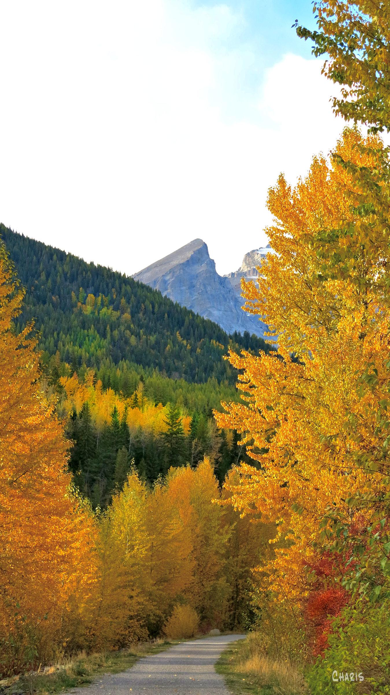 Fernie river park autumn ch rs