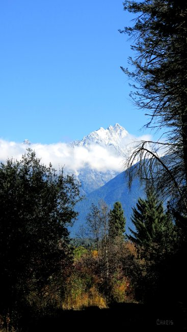 fisher autumn trail ch rs IMG_0671