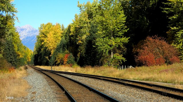 Morrisey autumn railroad track ch rs IMG_0862