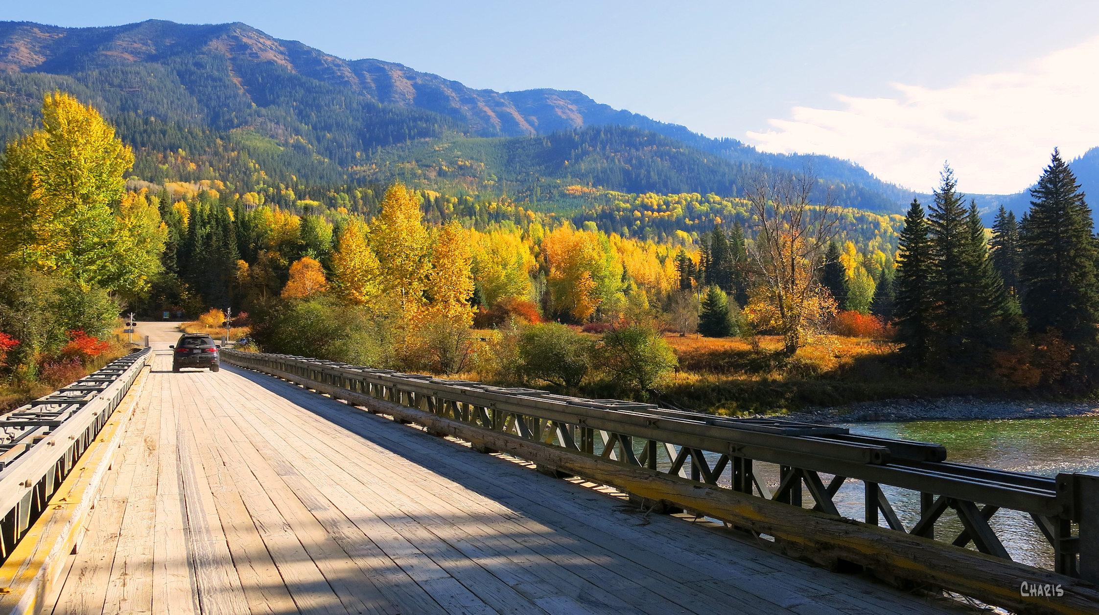 morrisey bridge autumn ch rs IMG_0882