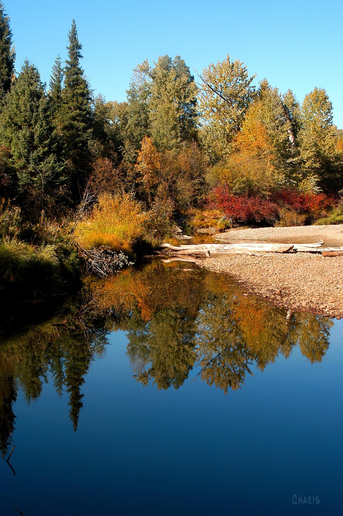 moyie river autumn ch rs DSC_0143 (2)