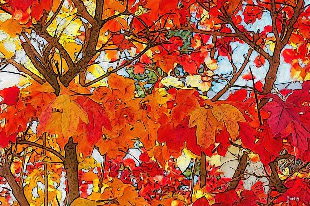 autumn branch yellow red gouche ch