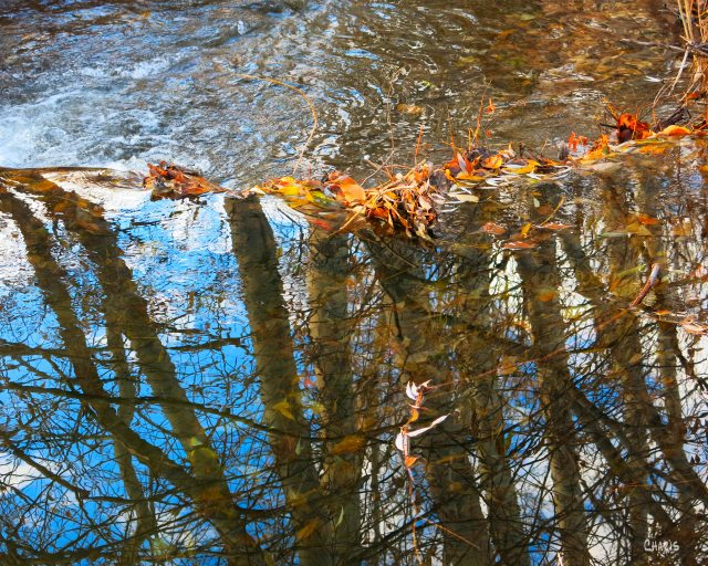 josephs creek reflect leaves waterfall autumn colour ch IMG_2320