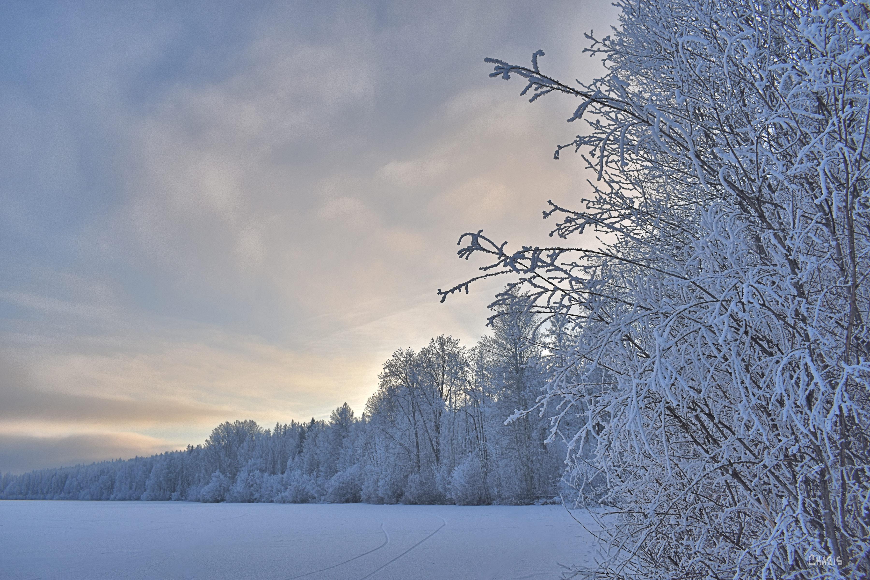New Lak frost shoreline winter ch rs DSC_0591 (1)