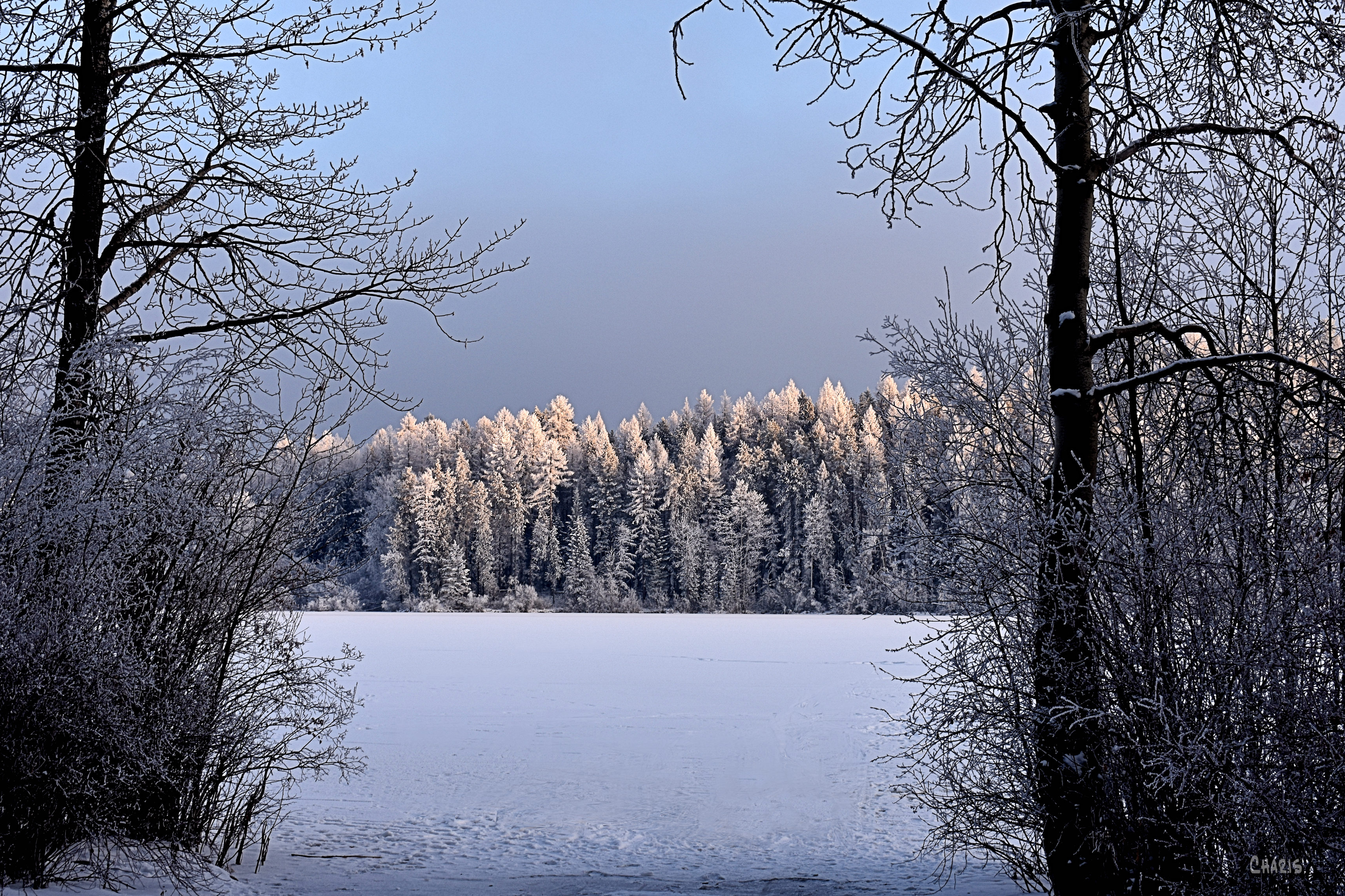 new lake sun frost ch rs DSC_0572 (1)