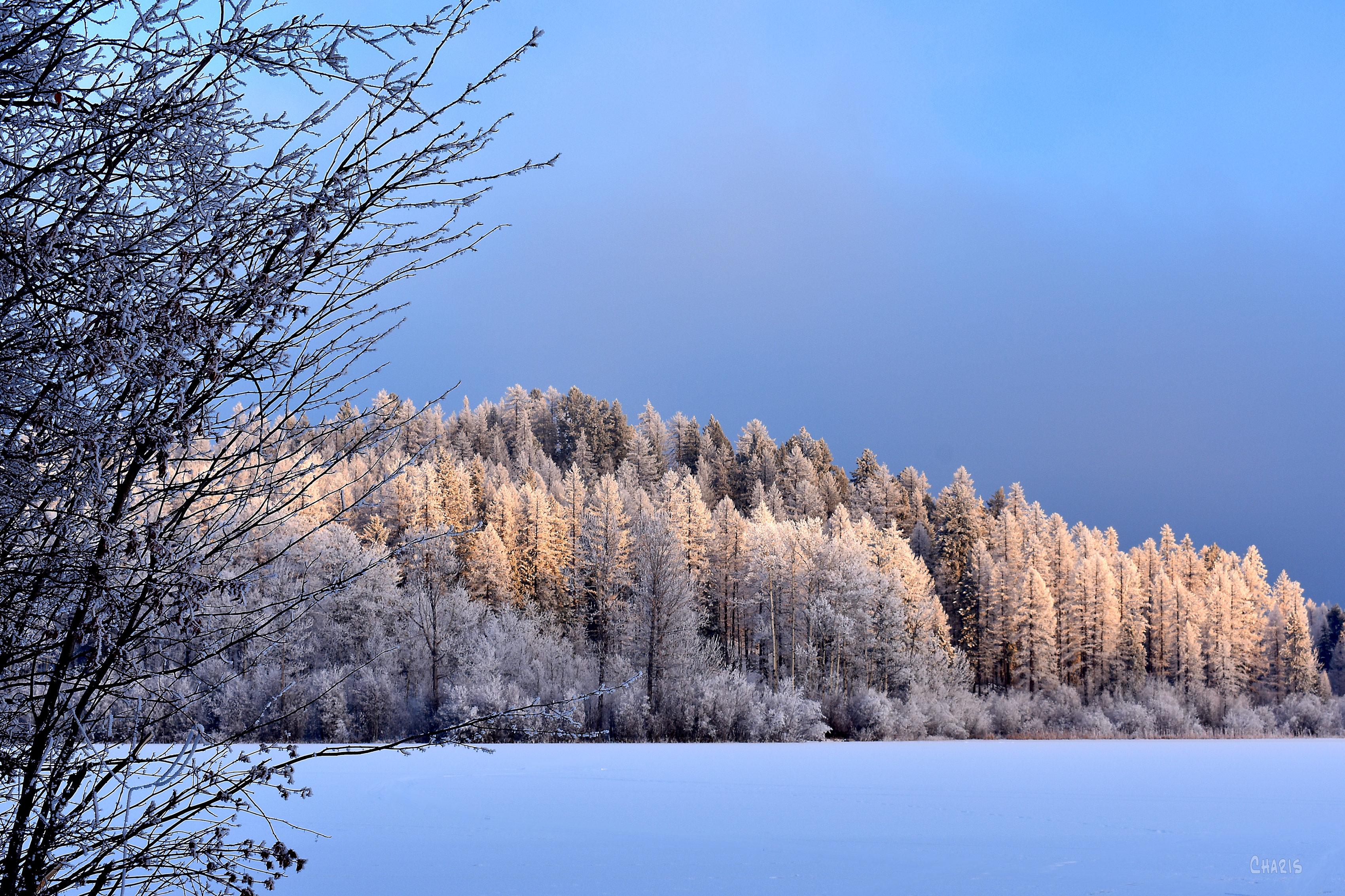 new lake winter north ch rs DSC_0575 (1)