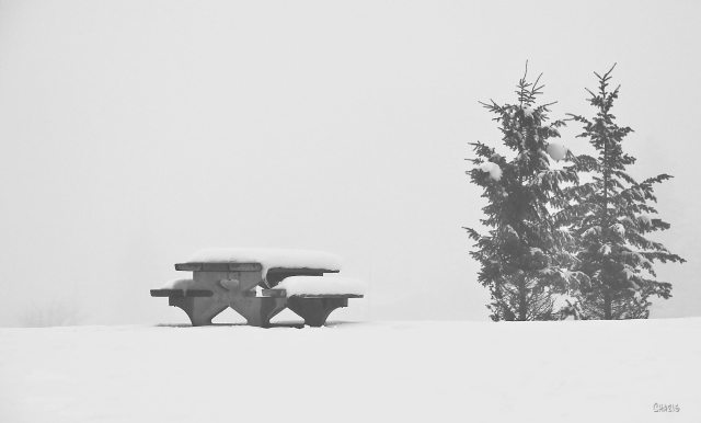 picnic table kin park bw ch IMG_2610