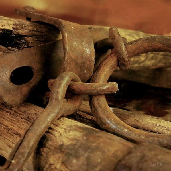 yoke rings hooks IMG_3179