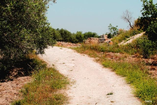 road Samaria ch rs IMG_0246