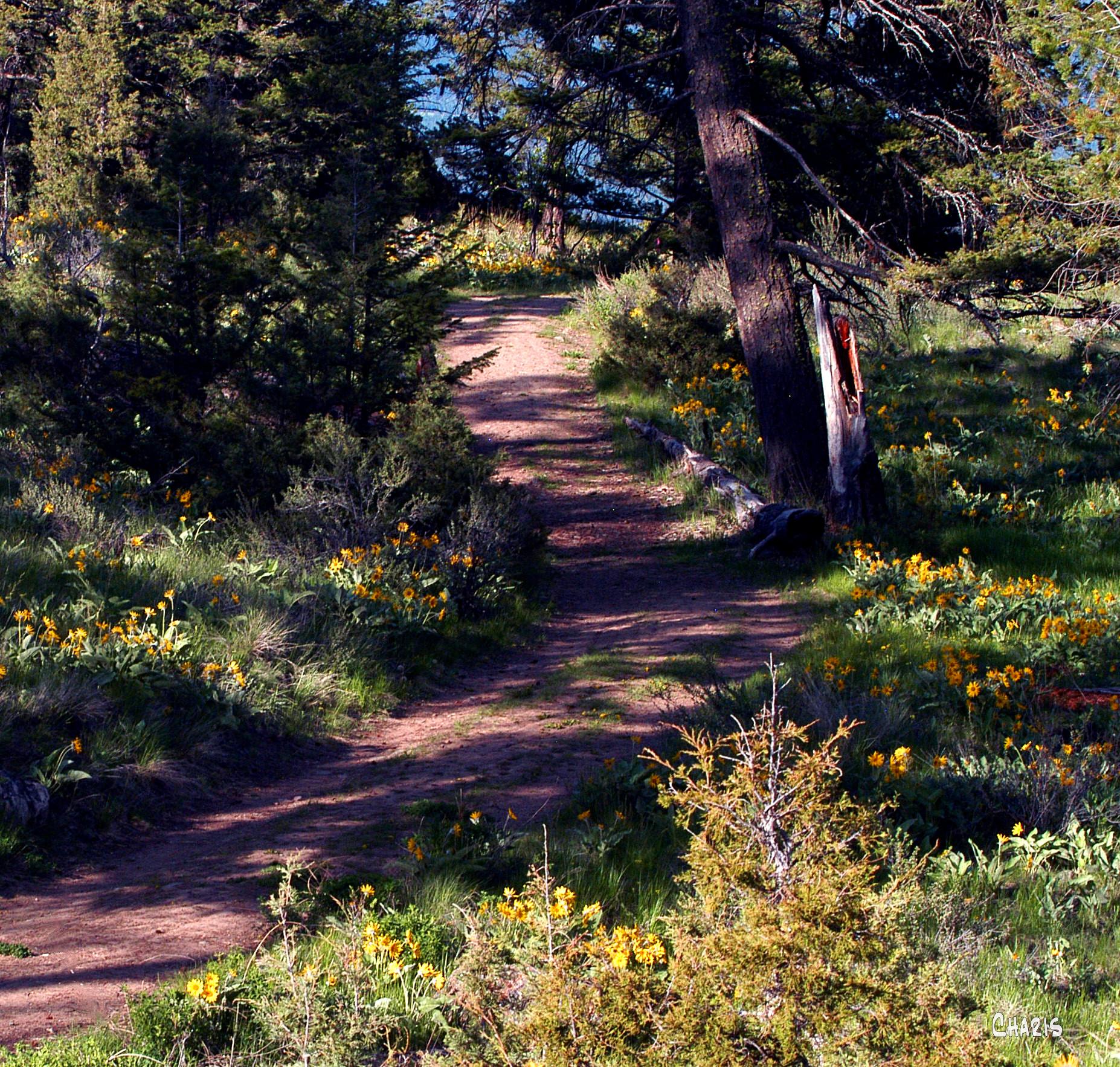 eager hill trail ch sq