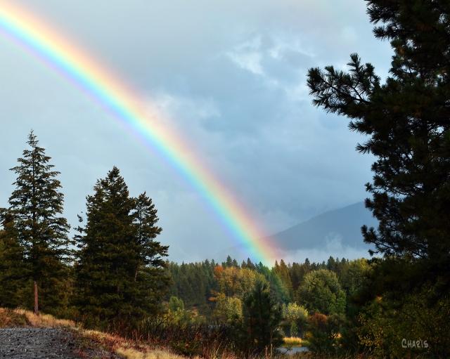 Idlewild rainbow crop ch DSC_0185