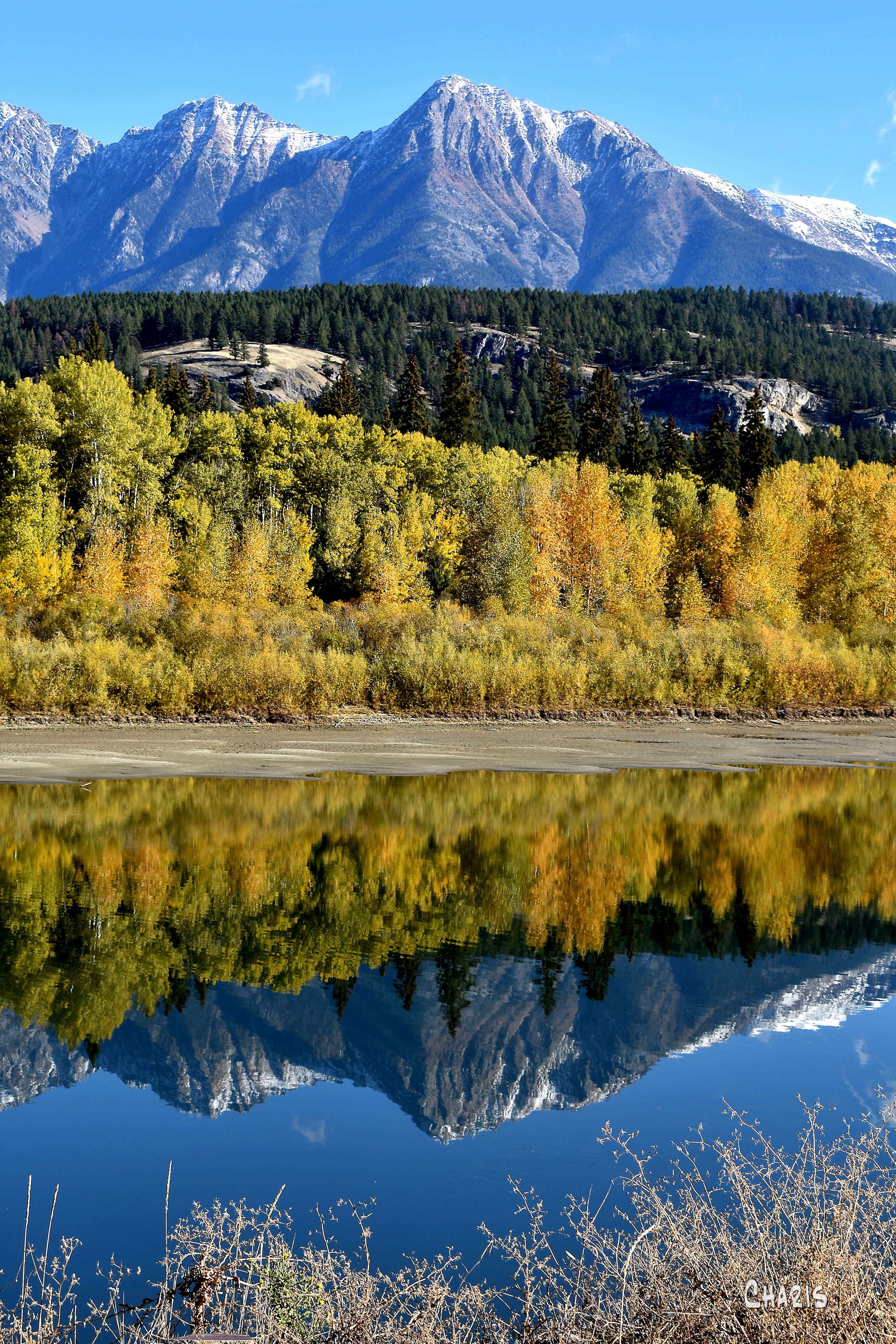 kootenayu river mountain reflect autumn vertical ch rs DSC_0518