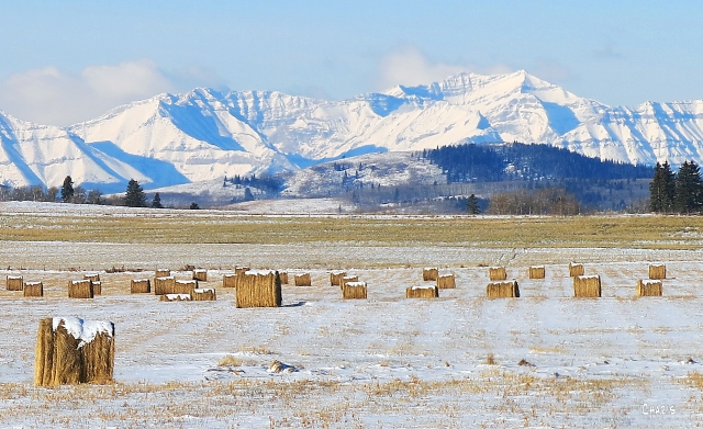 mountains hay bales winter ch Black Diamond IMG_5692