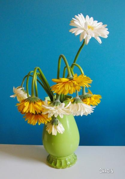 green vase limp flowers