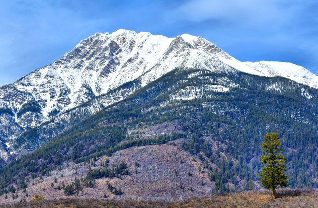 Bull Mountain DSC_0469
