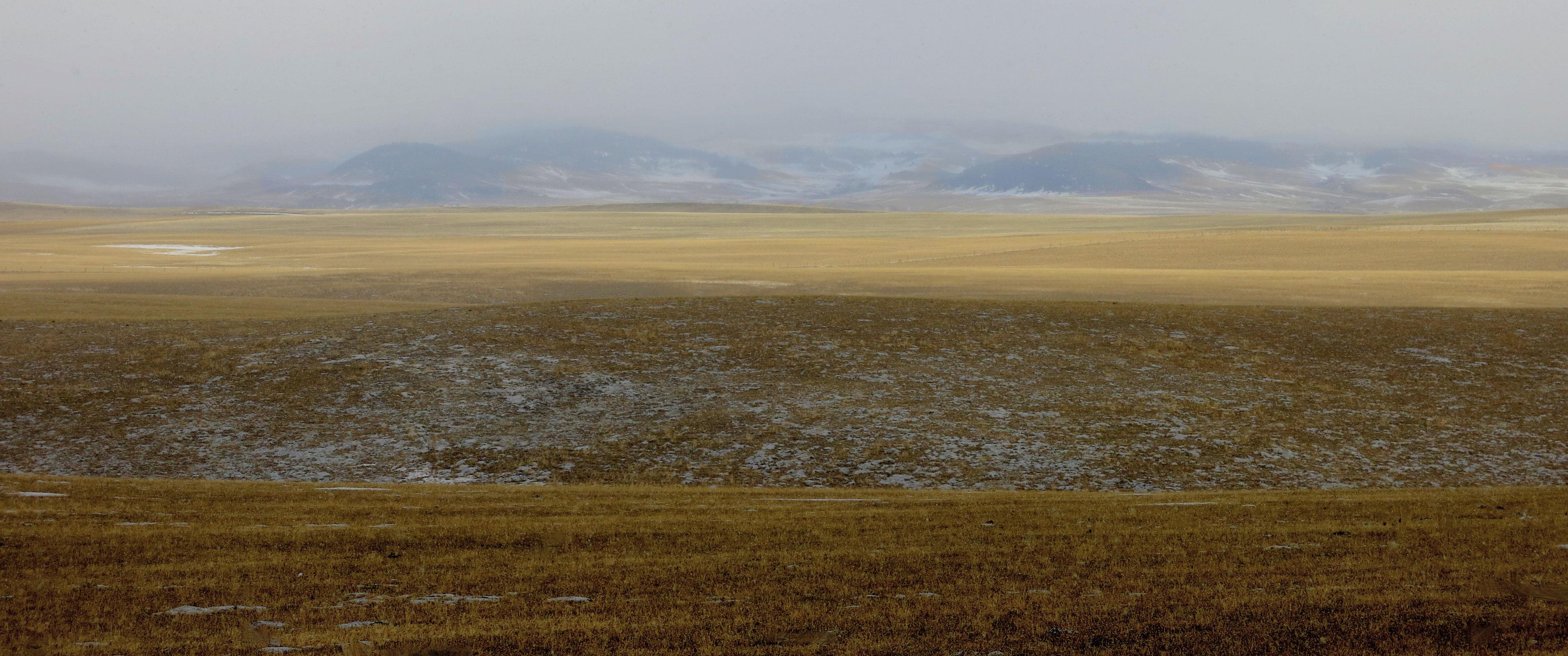 hwy 22 winter field grey day IMG_6520