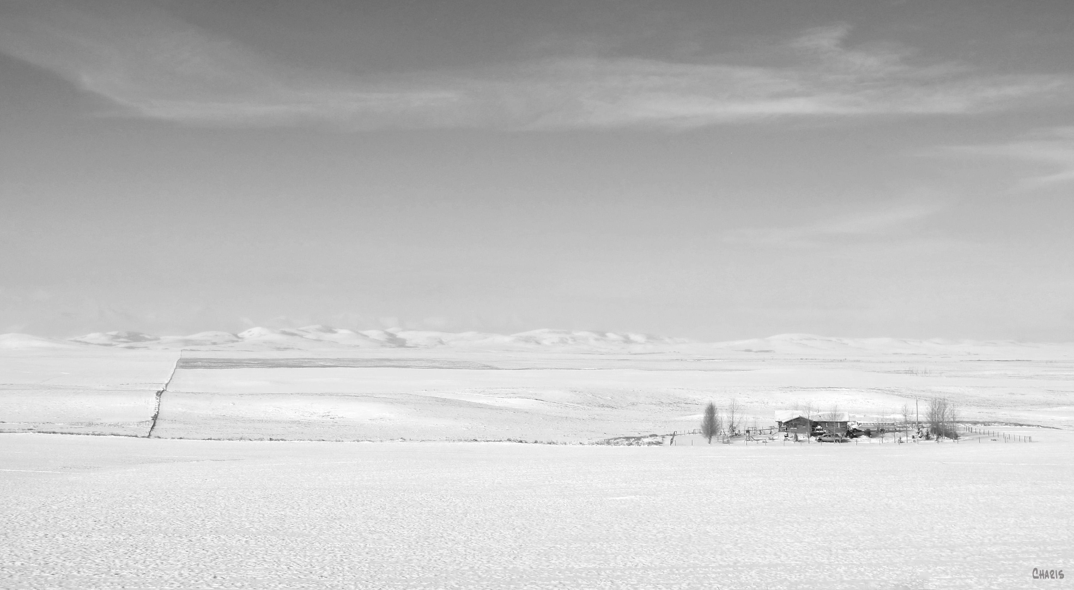 snow ranch bw ch