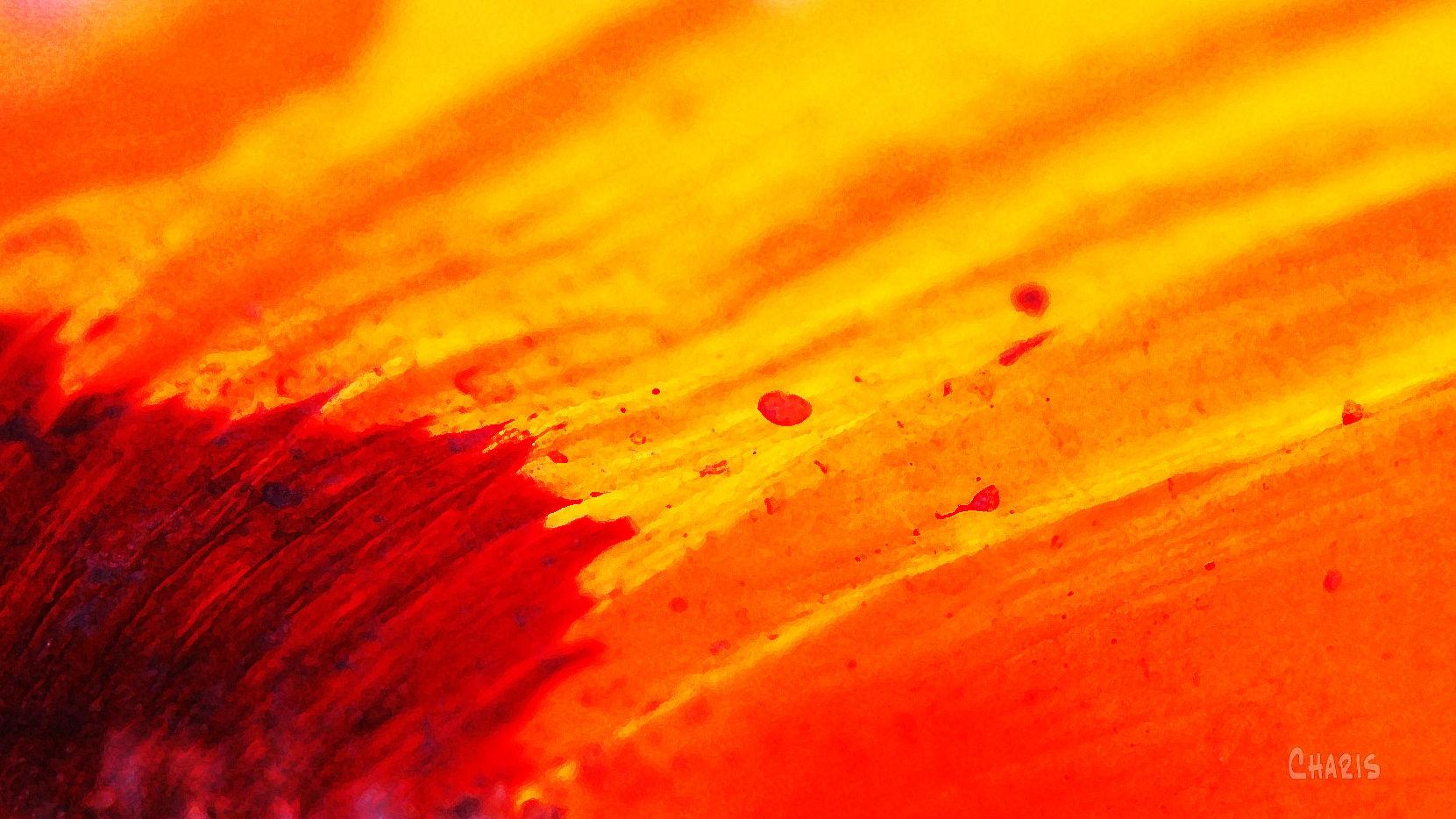poppy fire ch DSC_0177